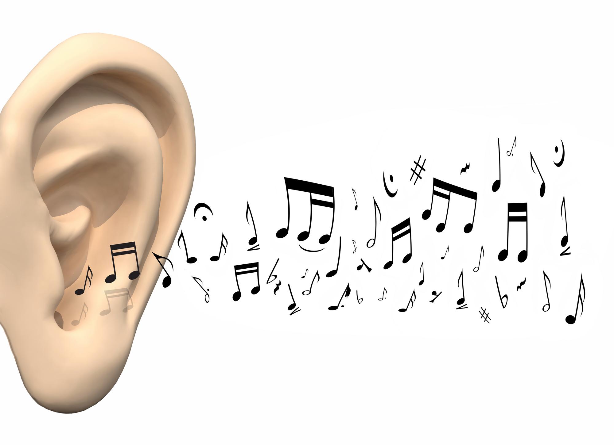אמנות ההקשבה סדנה לחברות ארגונים עמותות צוותים חינוכיים מגמות מוזיקה כולי אוזן